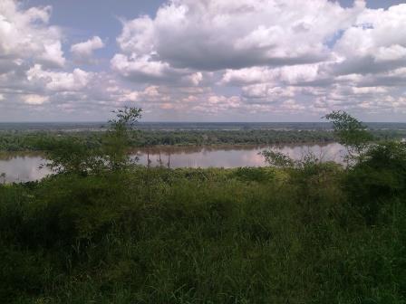 La foret naturelle du bassin du Congo le long du fleuve Congo dans la province de la Tshopo, Nord-Est de la RD Congo.